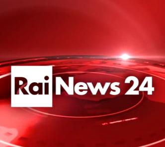 immagine lofo Rai News 24