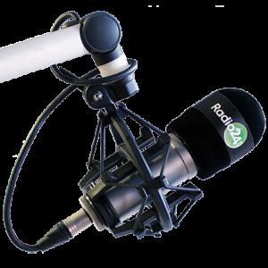 Radio24 – Reportage a cura della IV L